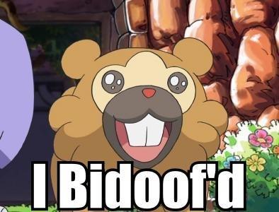 I bidoofed