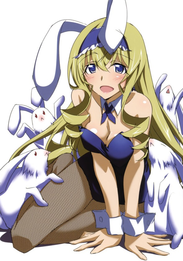Infinite Stratos Cecilia Bunny Girl