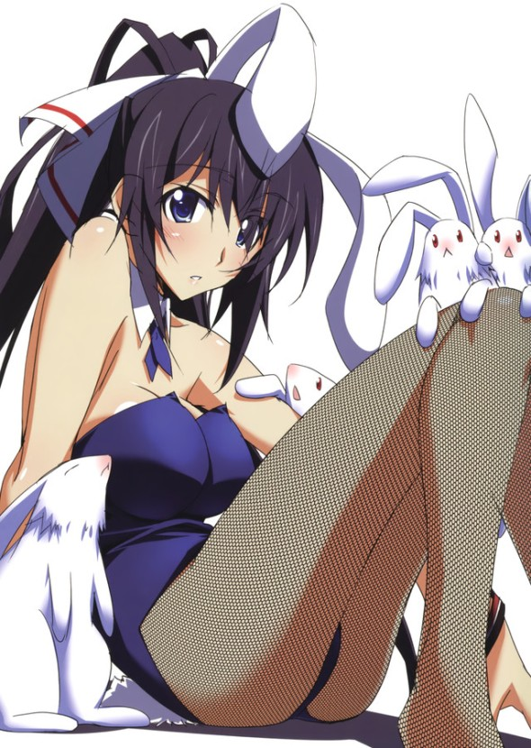 Infinite Stratos Houki Bunny Girl