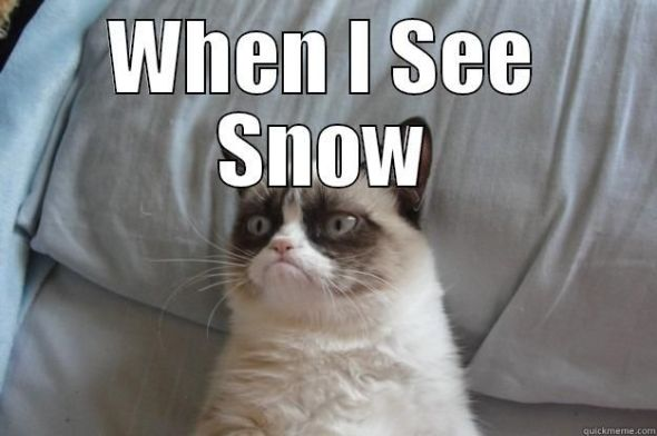 Grumpy Cat - When I see snow