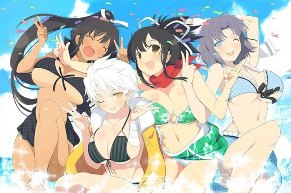 Senran Kagura Estival Versus Group Leaders